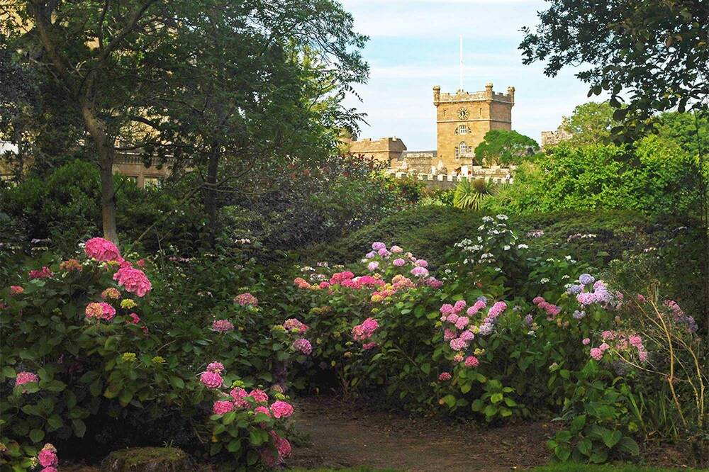Rhododendron display at Culzean Castle & Country Park
