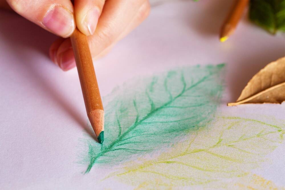 A close-up of a hand holding a green pencil and doing a leaf rubbing on a piece of paper.