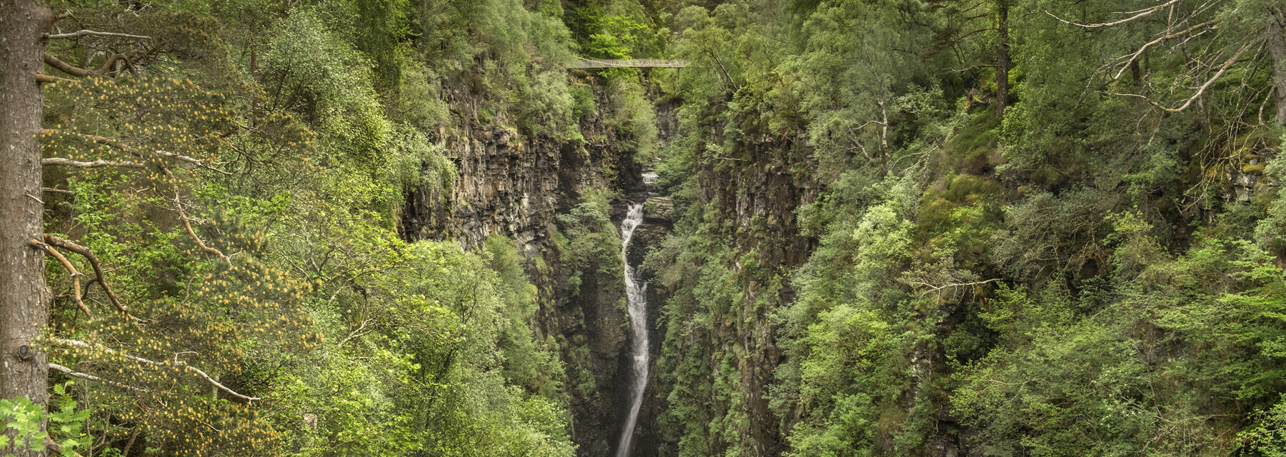 A view looking along a deep, woodland gorge towards a waterfall. A suspension bridge spans the gorge above the waterfall.