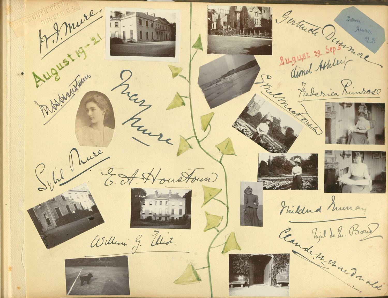 A page from a photo album, divided in half with a watercolour of ivy. There are 12 small photos and 12 signatures visible.