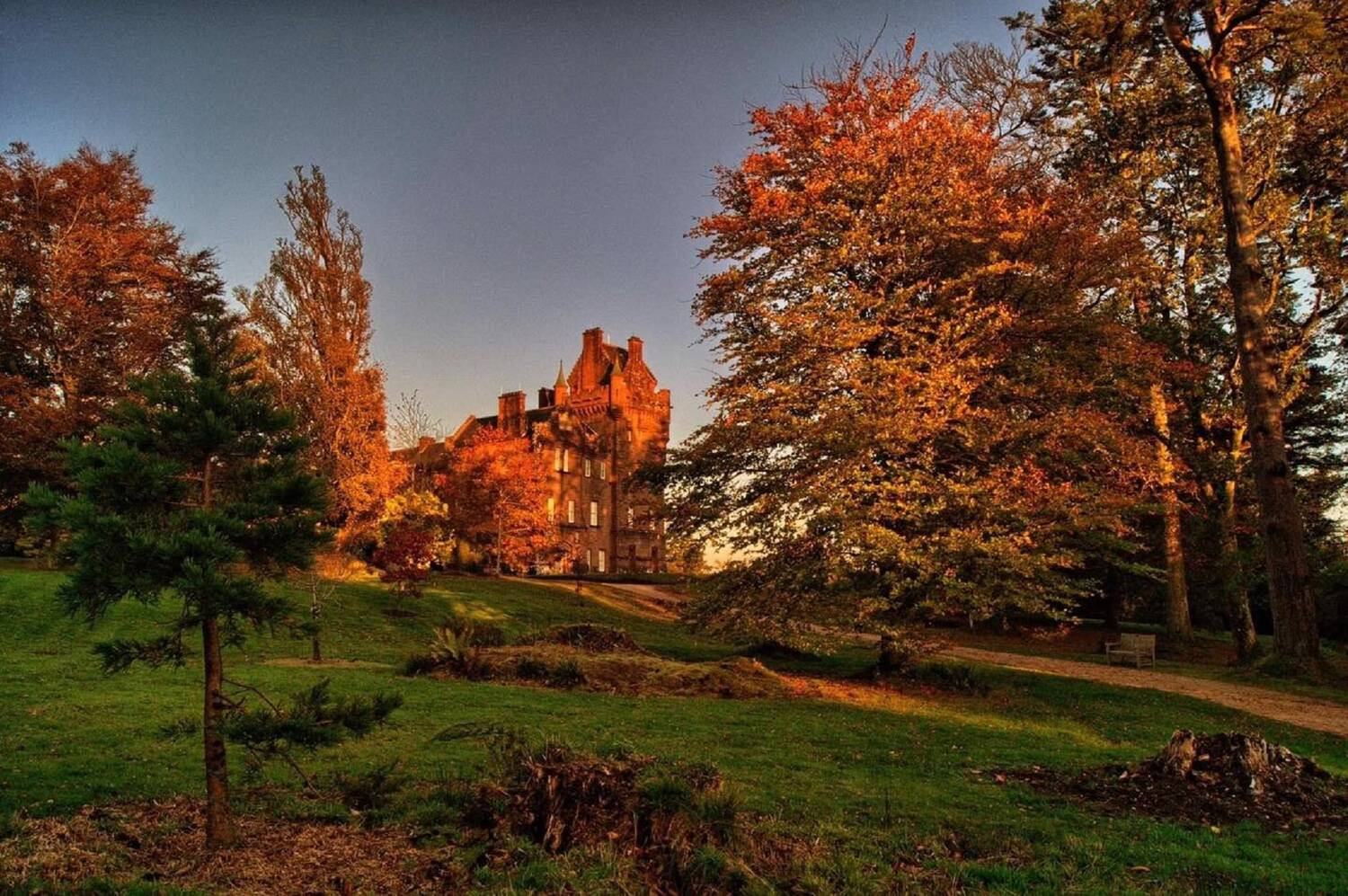 Brodick Castle is seen bathed in an orange glow from the sun, from the garden below. The tall beech trees in the foreground have glowing orange leaves.