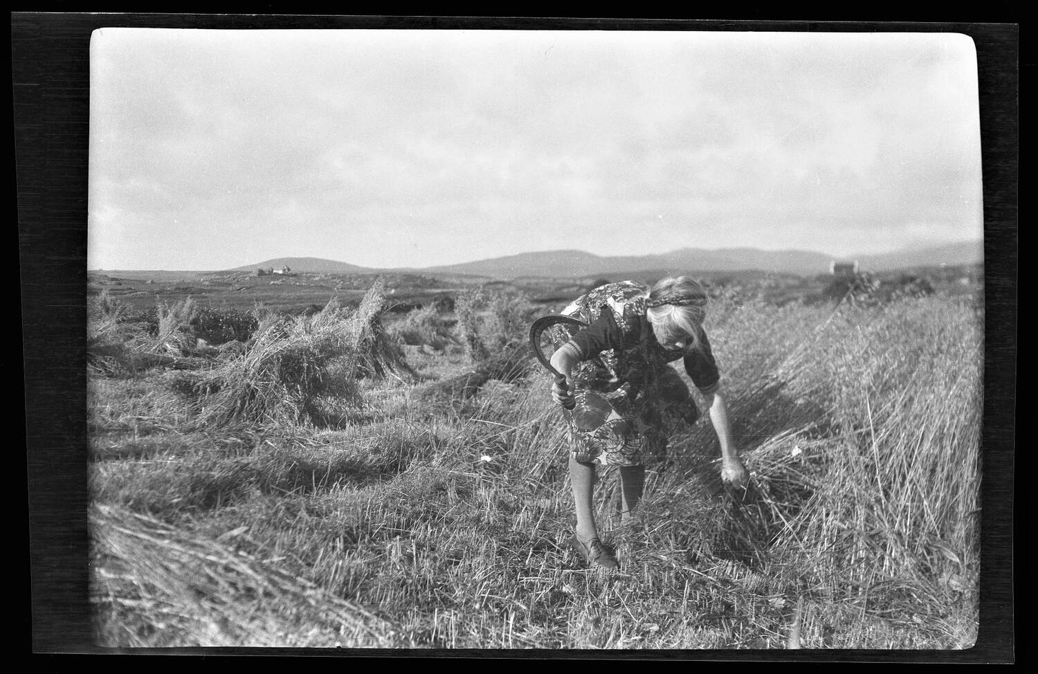 A woman bends over in a grassy field, holding a sickle.