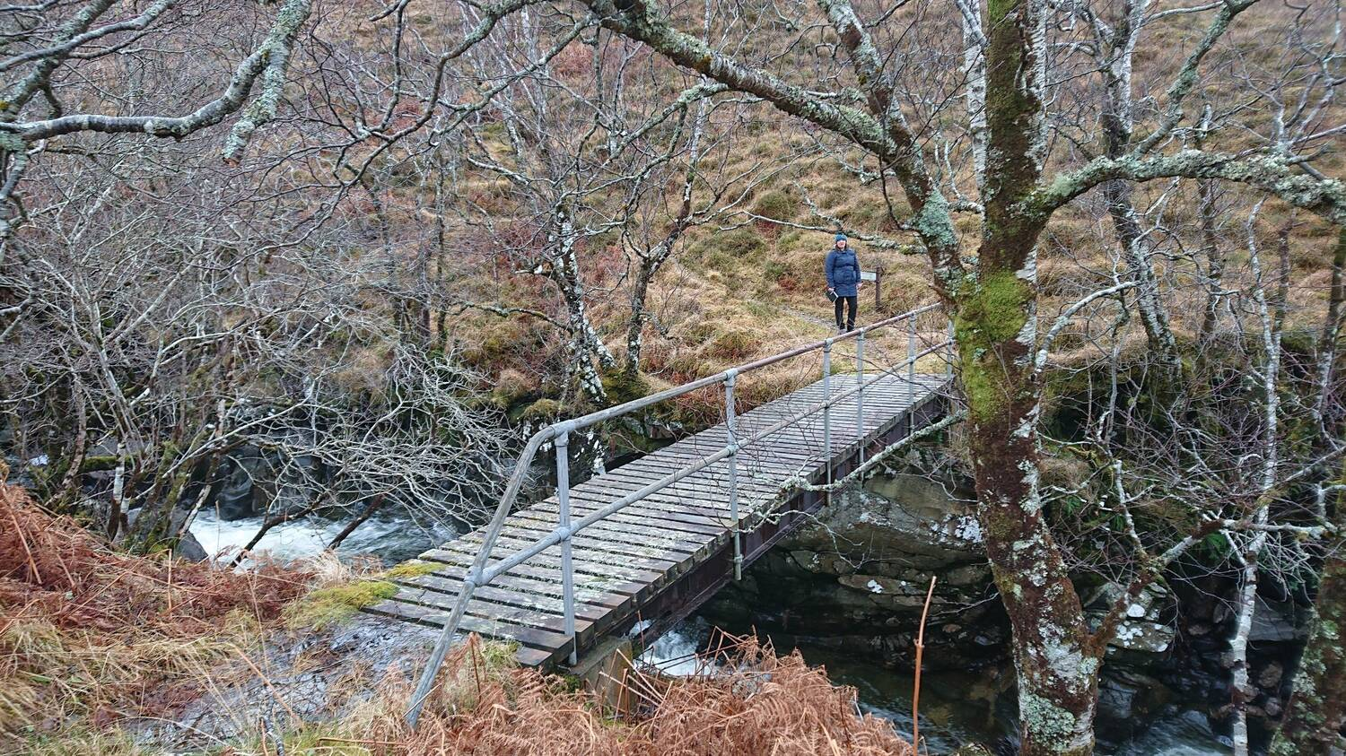 A wooden bridge with a metal handrail on one side spans a rushing river in a Highland woodland.