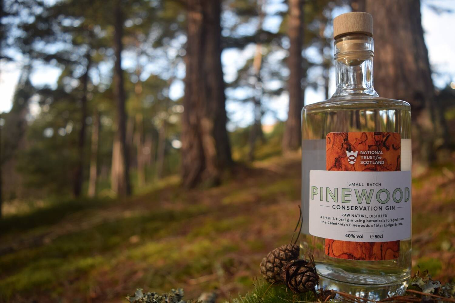 A bottle of gin sits on a log in a woodland, next to a pine cone.