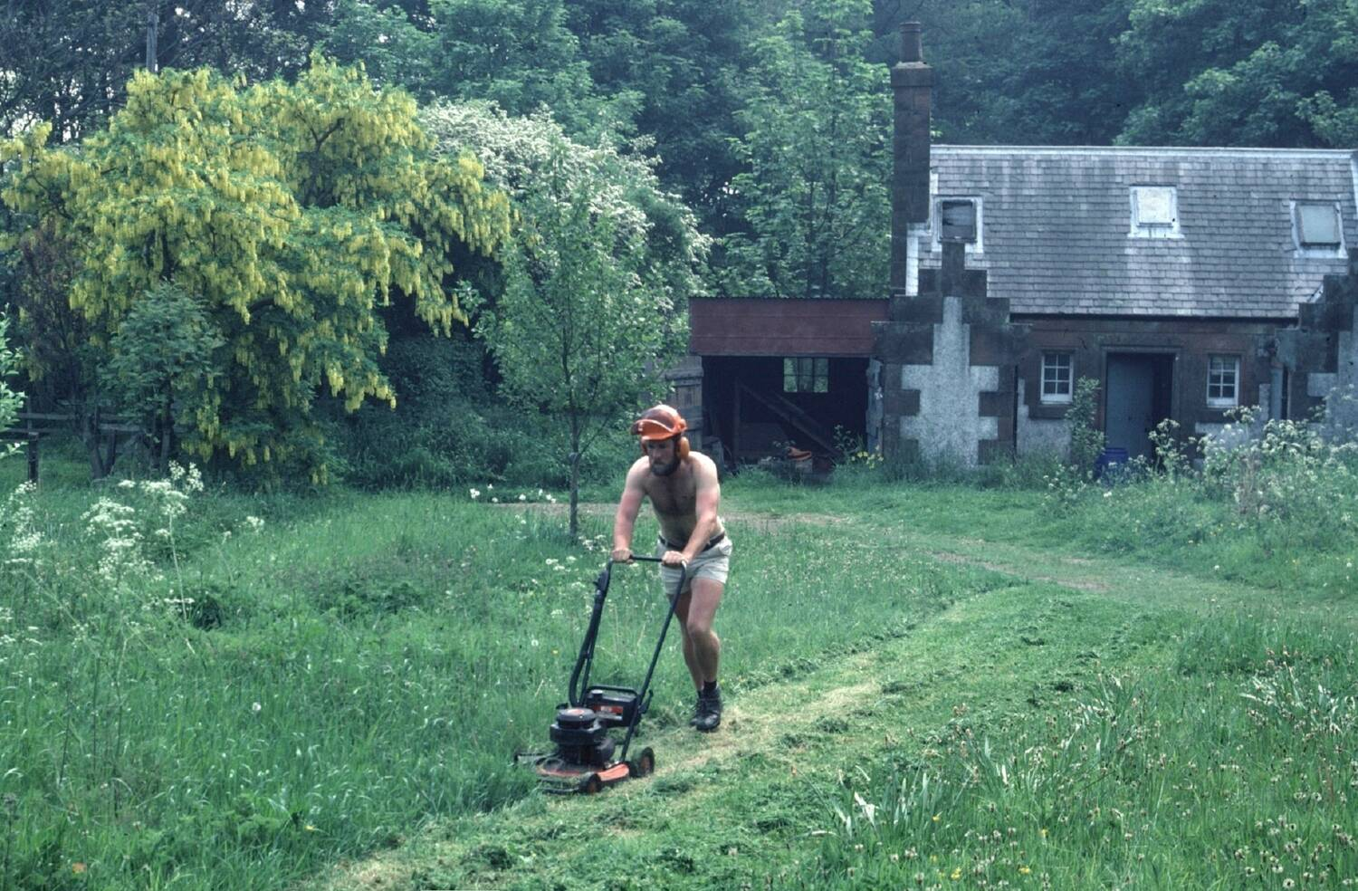A man mows long grass in a garden on a hot summer's day.