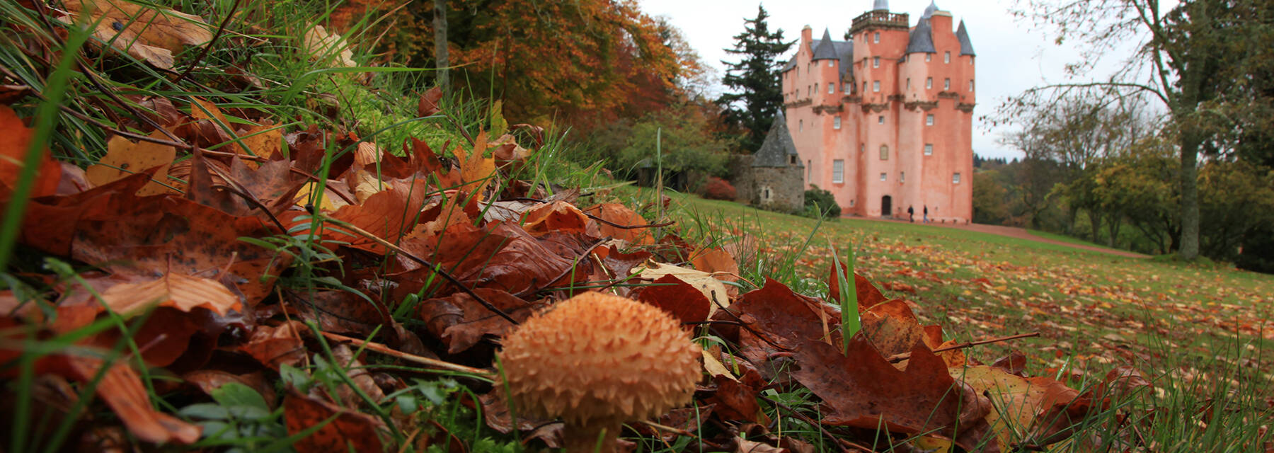 Craigievar Castle in autumn