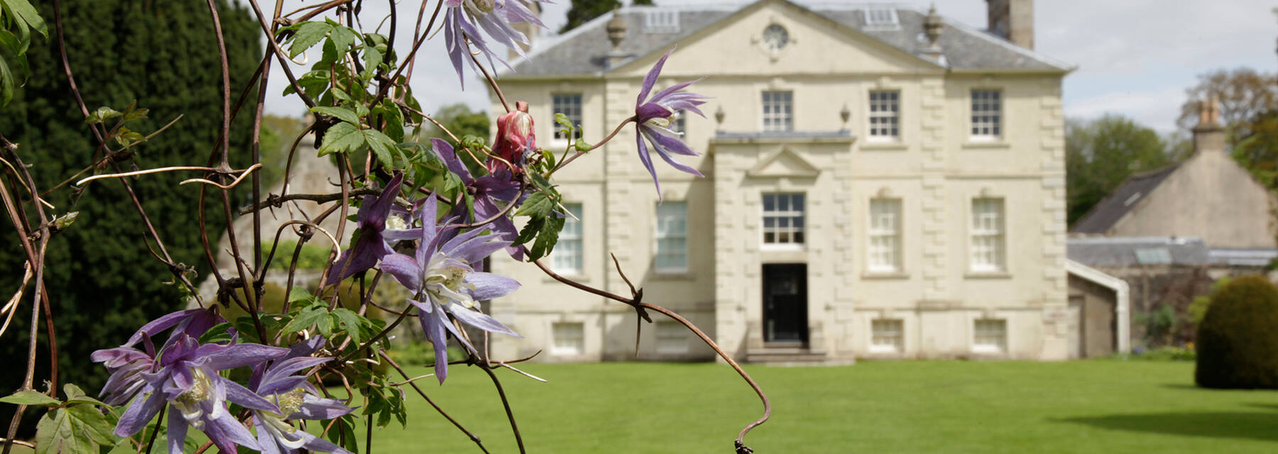A view of the Georgian Greenbank House seen from across the lawn. A purple flowering plant is in the foreground.