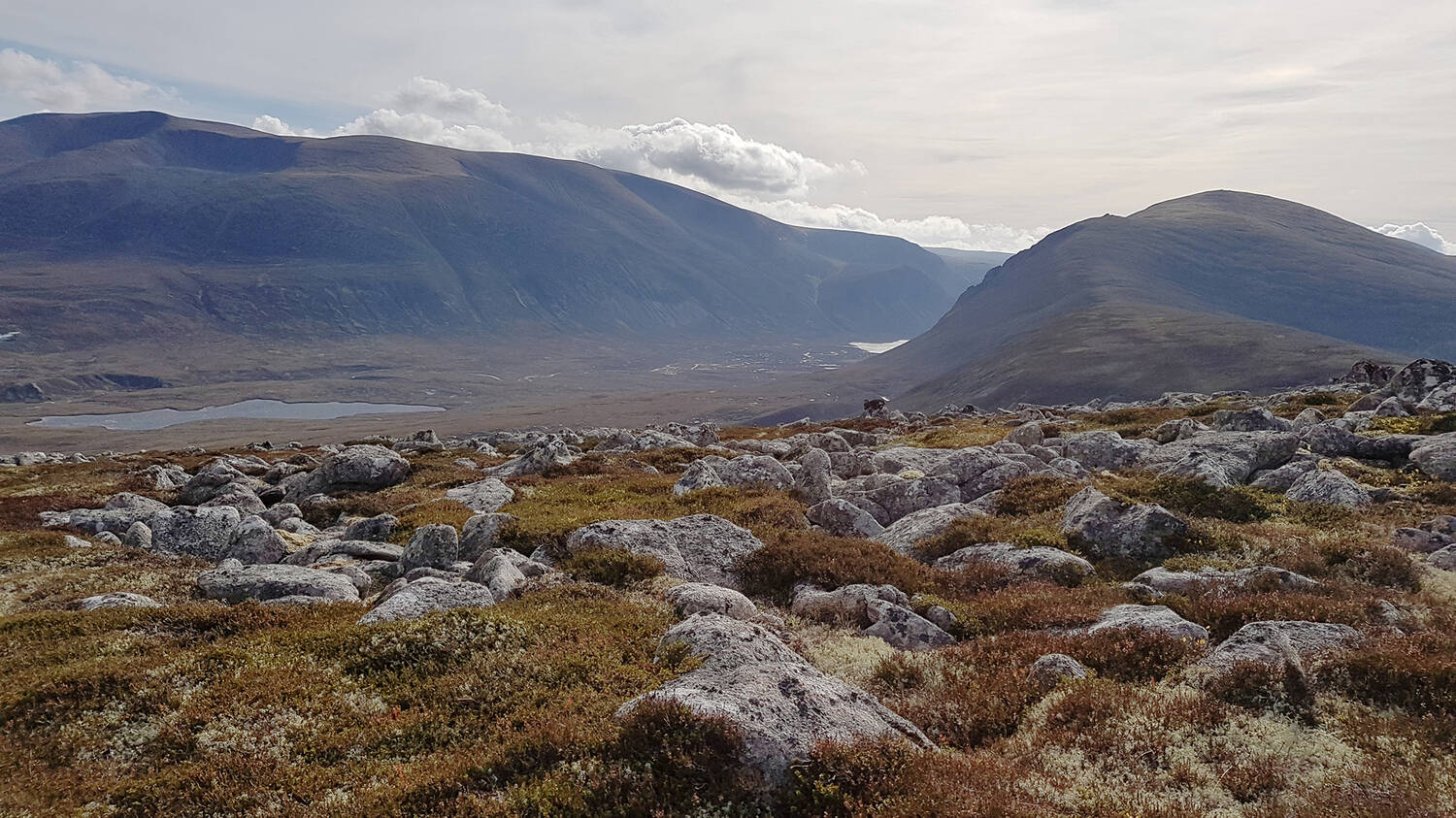 The wild landscape of Wester Ross