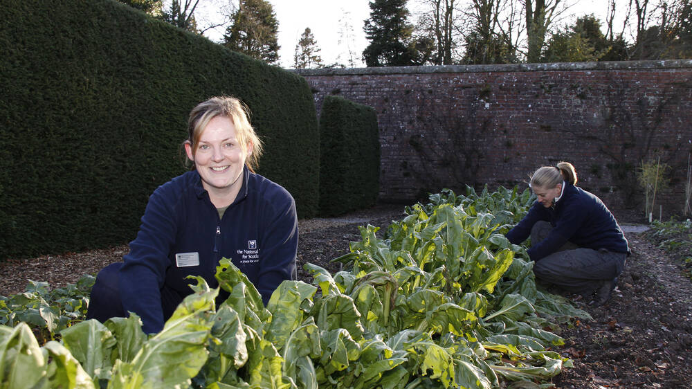 Two women crouch by a vegetable bed in a walled garden. The woman in the background is working on the plants. The lady in the foreground smiles at the camera.