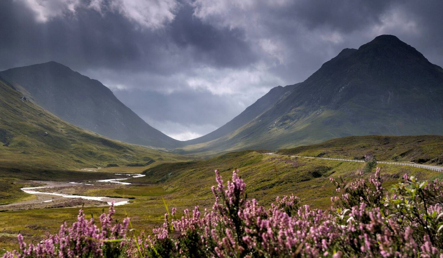 Glencoe with purple heather in the foreground