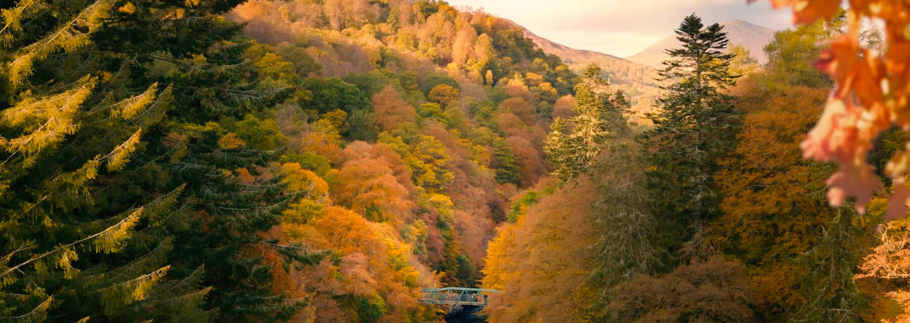 The river and autumn trees at Killiecrankie