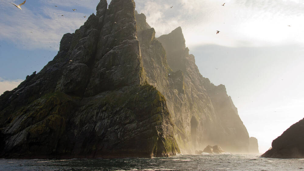 A huge cliff rises from the sea, with gannets swooping in the air.