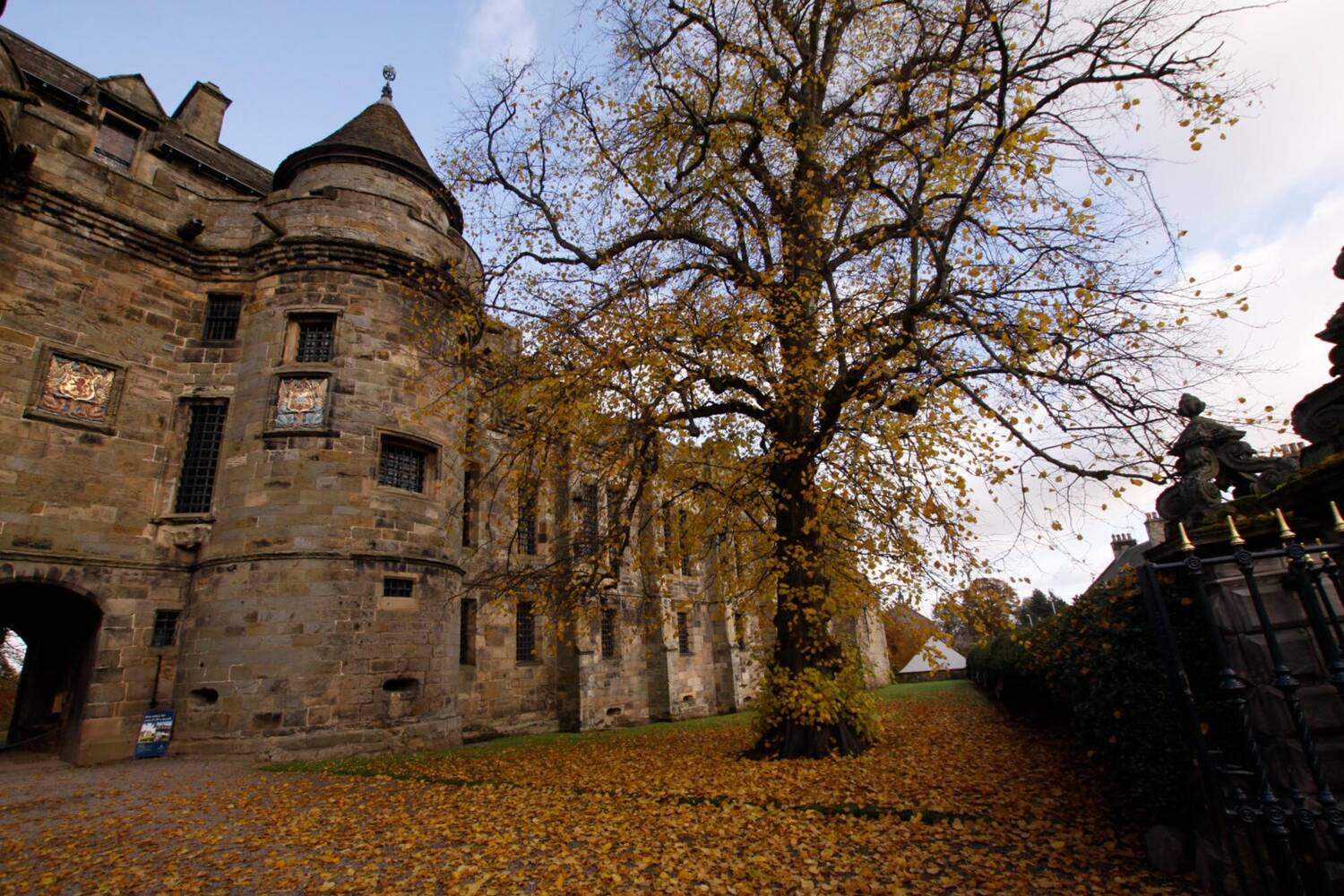 Falkland Palace in autumn, with a large tree in front, its leaves on the ground.