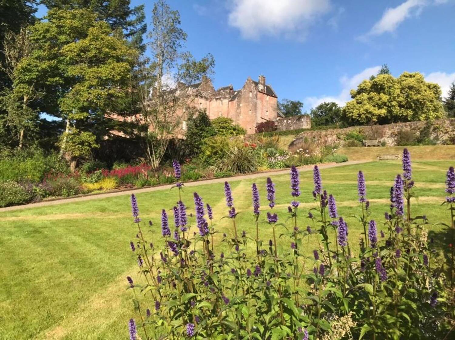 In the foreground are purple spikes of flowers, with a lawn mown with diagonal 'saltires'. In the background is Brodick Castle under a blue sky.