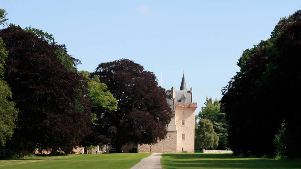 A view of the west wing of Brodie Castle from along an avenue of beech trees. The pink tower towards the front of the castle is clearly visible. It is a sunny day with a clear blue sky.