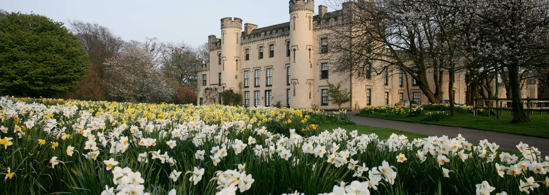 House of Binns exterior with carpets of daffodil in front