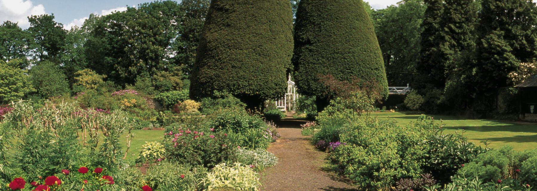 A gravel path runs through a garden, bordered by colourful flower beds either side. Large and very tall yew trees stand either side of the end of the path.