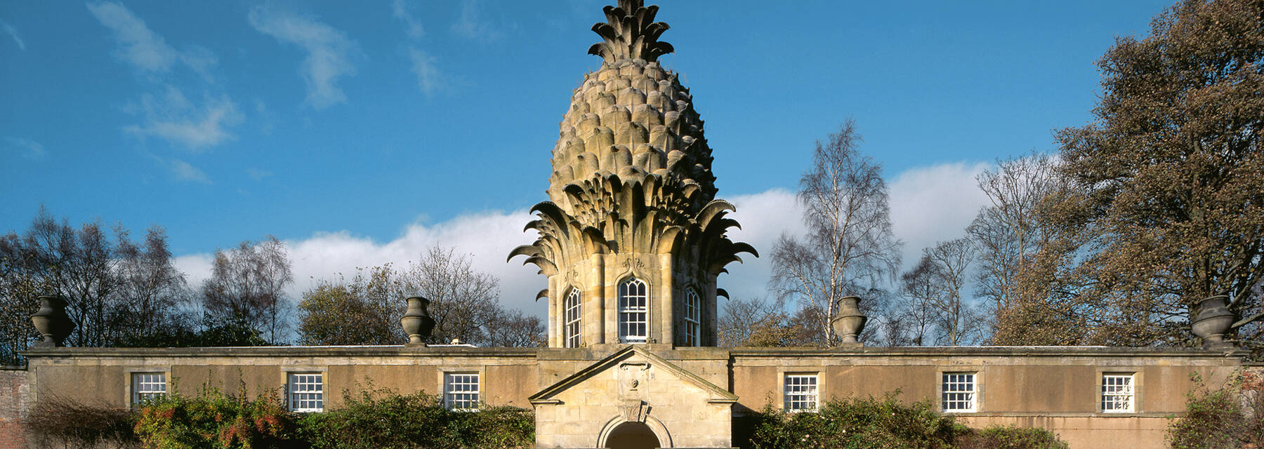 The front exterior of the Pineapple