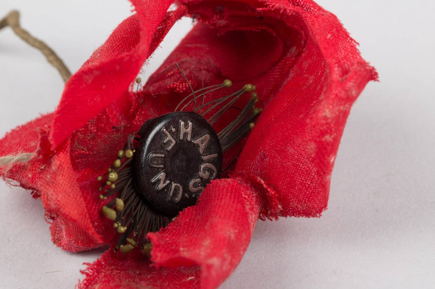 A crumpled red poppy, made from material, with HAIGS FUND on the central button.
