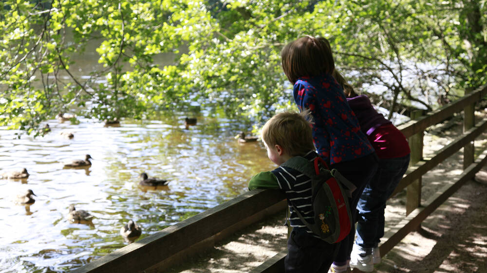 Children by the pond at Brodie