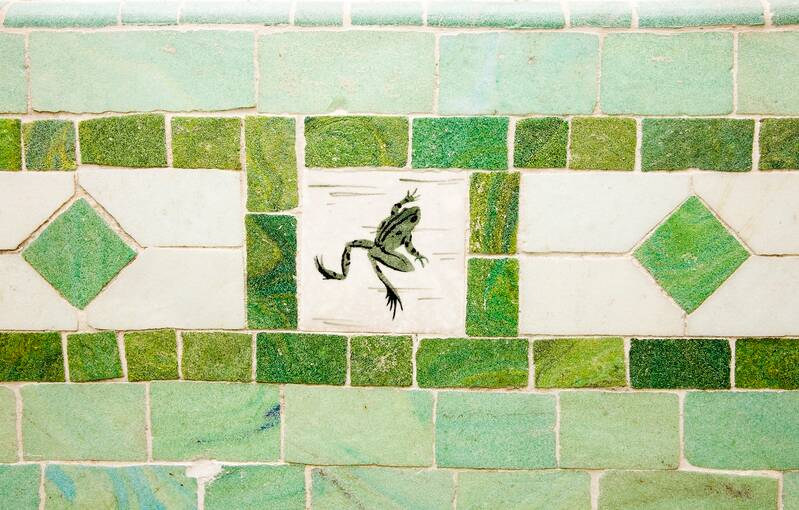 A close-up of some green bathroom wall tiles, which have a picture of a frog and green diamonds on them.