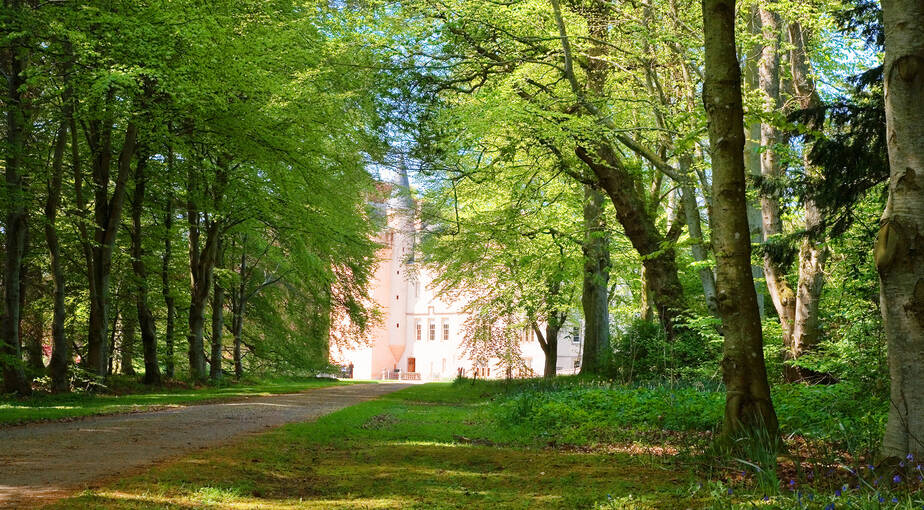 Brodie Castle seen through the woods