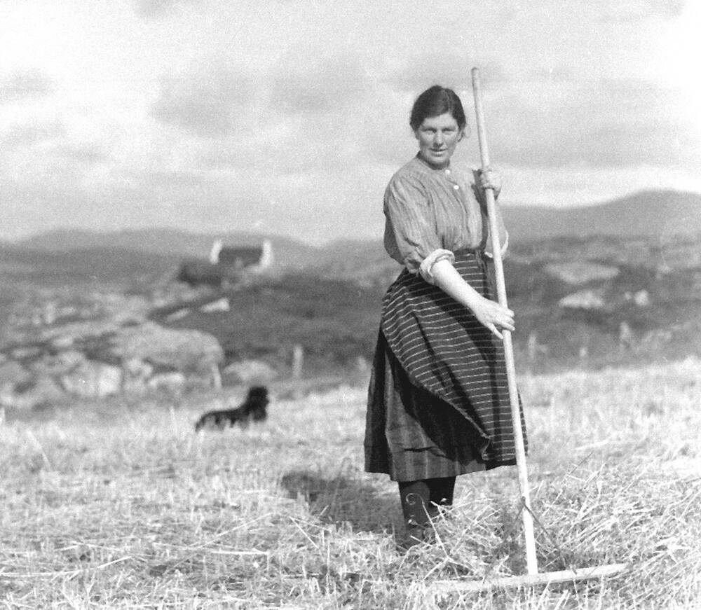 A woman stands with a large rake in grassy croftland. A sheep is lying down behind her. In the background are hills and a crofthouse.