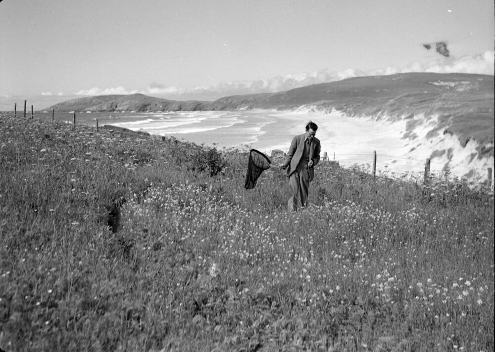 A black and white photograph of a man walking through a flower meadow by the sea, holding a large butterfly net.