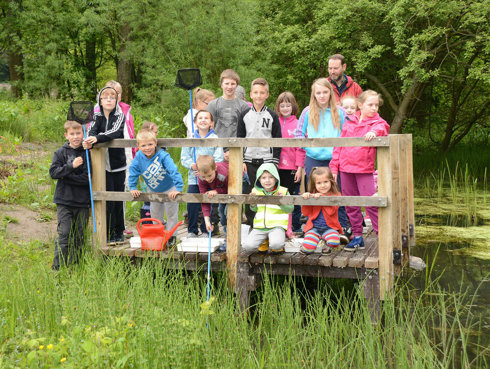 Pond dipping with a primary class