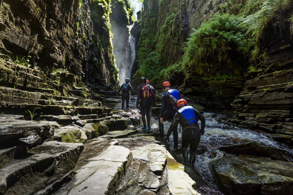 Gorge scramblers at Corrieshalloch help spot invasive species.