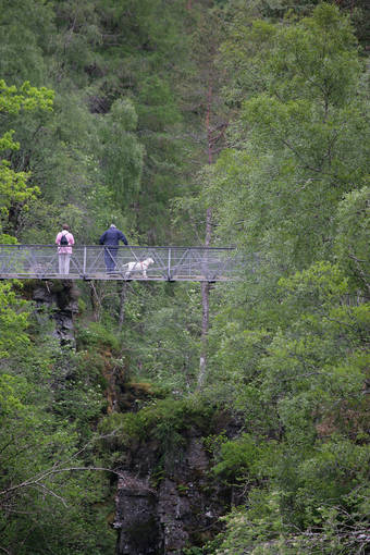 Walkers and their dog stand on the suspension bridge in Corrieshalloch Gorge