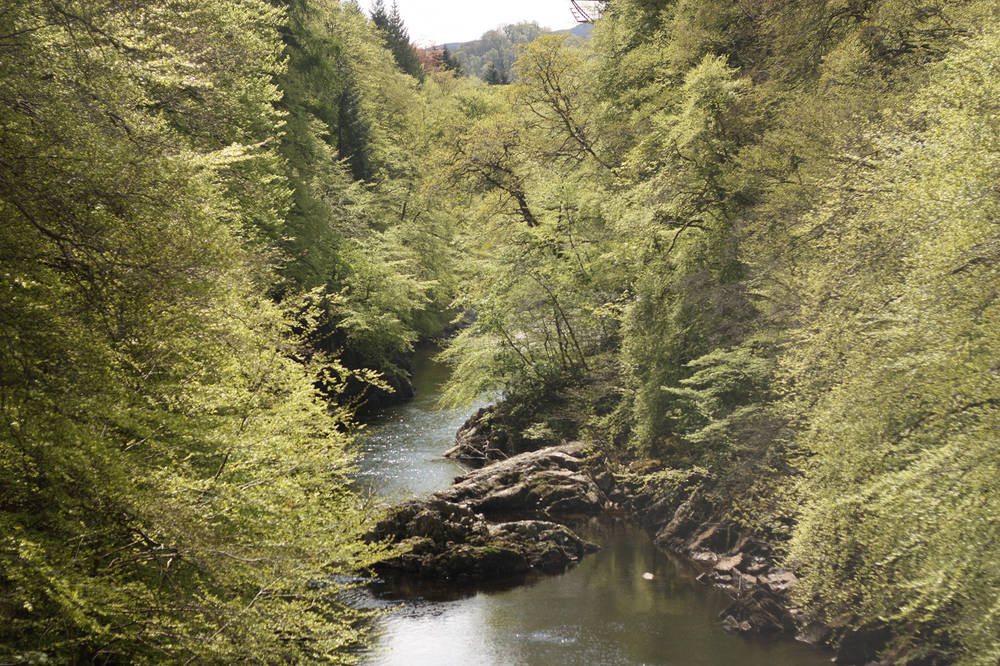The River Garry and wooded gorge at Killiecrankie