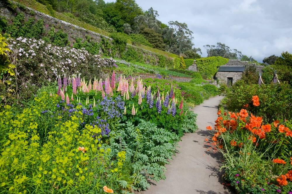The walled garden at Inverewe
