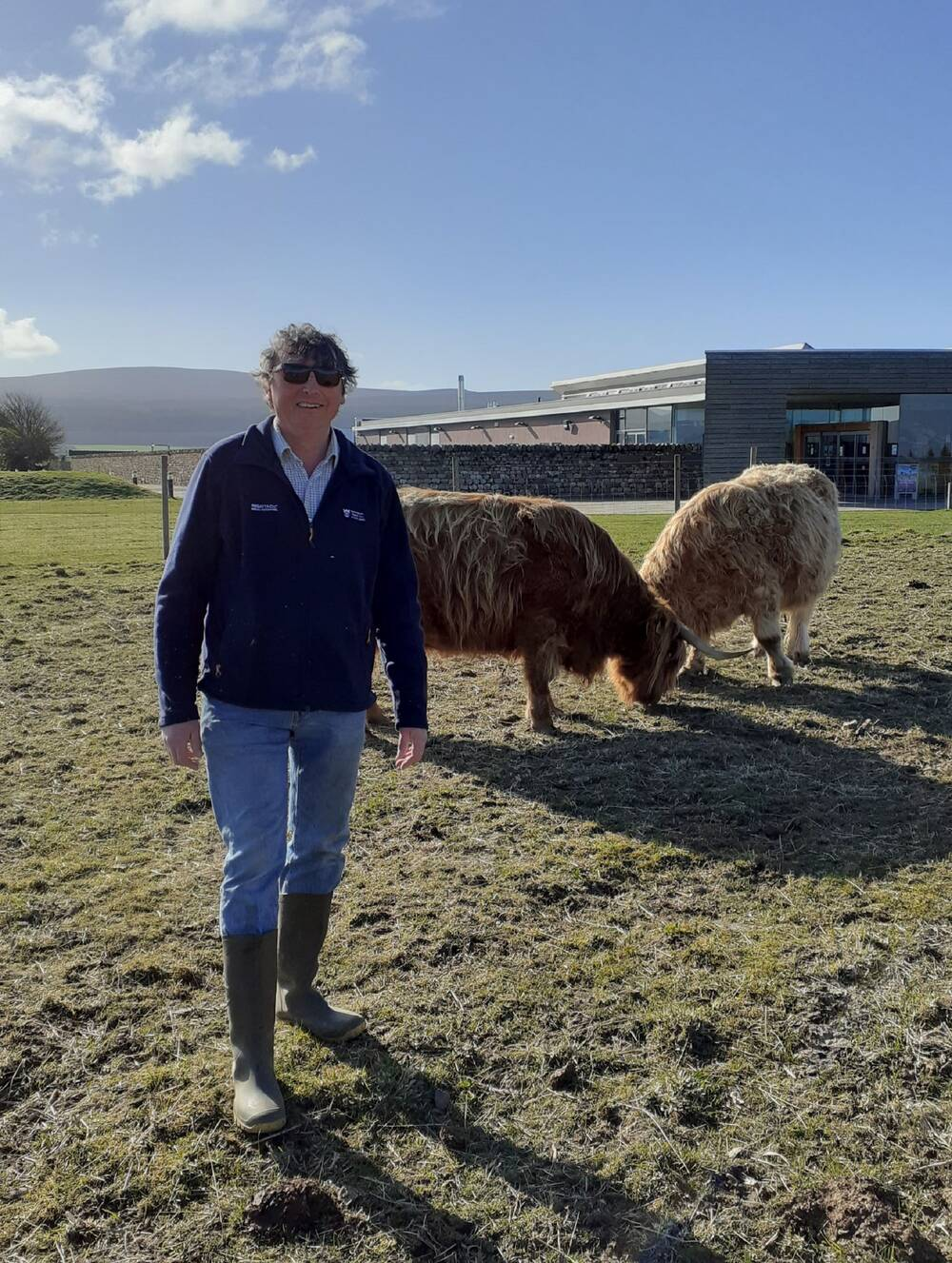A National Trust for Scotland staff member stands in a fenced-off paddock with two grazing Highland cows. Culloden Visitor Centre can be seen in the background. It is a lovely sunny day.