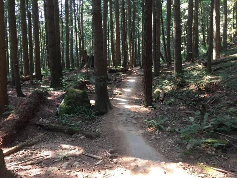 Espresso Trail on Mount Fromme