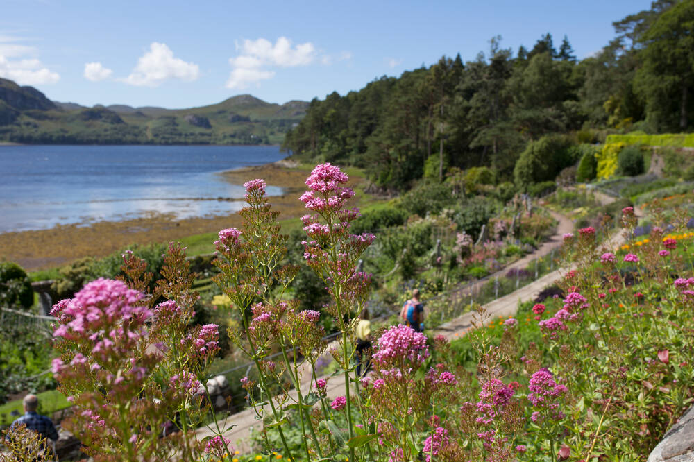 The walled garden at Inverewe, looking towards the loch with hills in the distance. Visitors walk along the terraced paths. Pink flowers spring up in the foreground.
