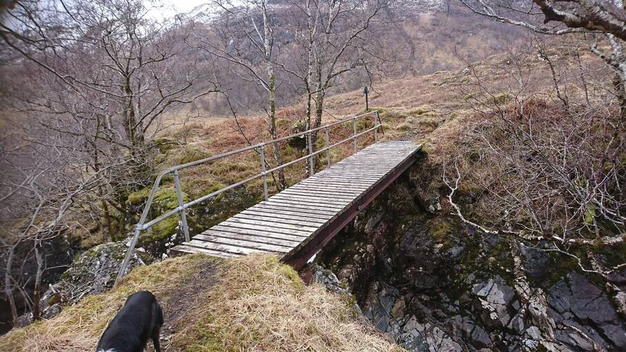 A wooden footbridge with a handrail, crossing a woodland river.