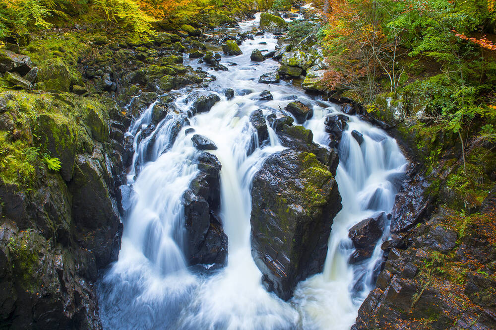 The Black Linn Falls crash down the river, which is surrounded by autumnal trees.