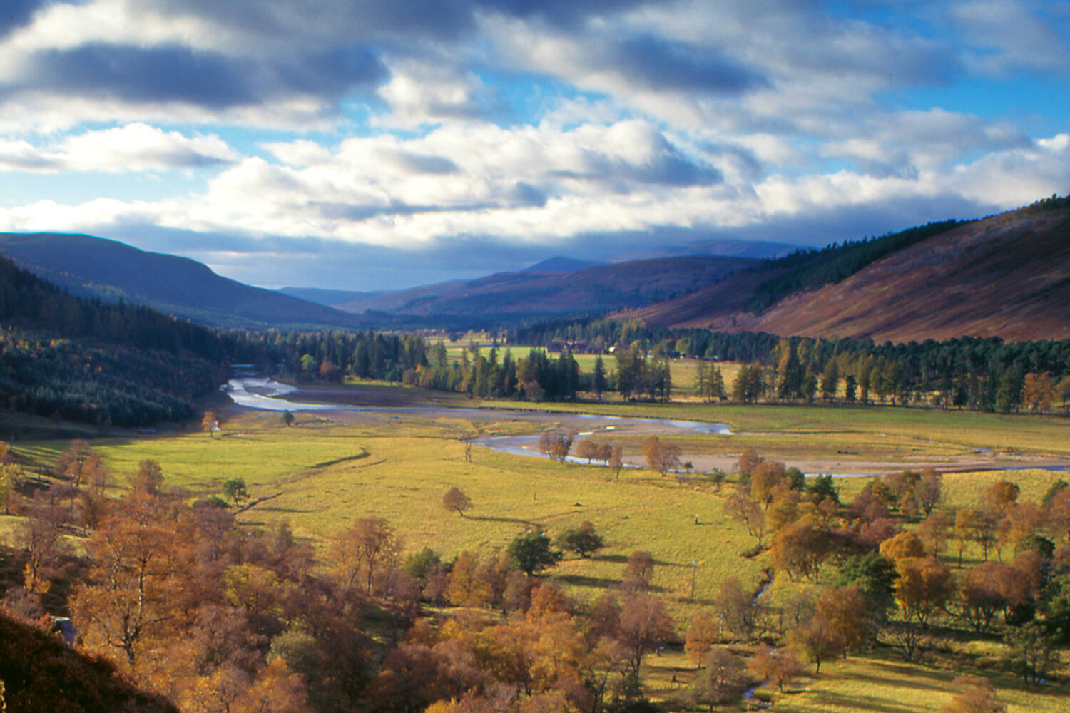 A view looking down a wide glen on Mar Lodge Estate. A river winds its way through the centre, with trees on the banks either side and heather-covered hills rising into the distance.