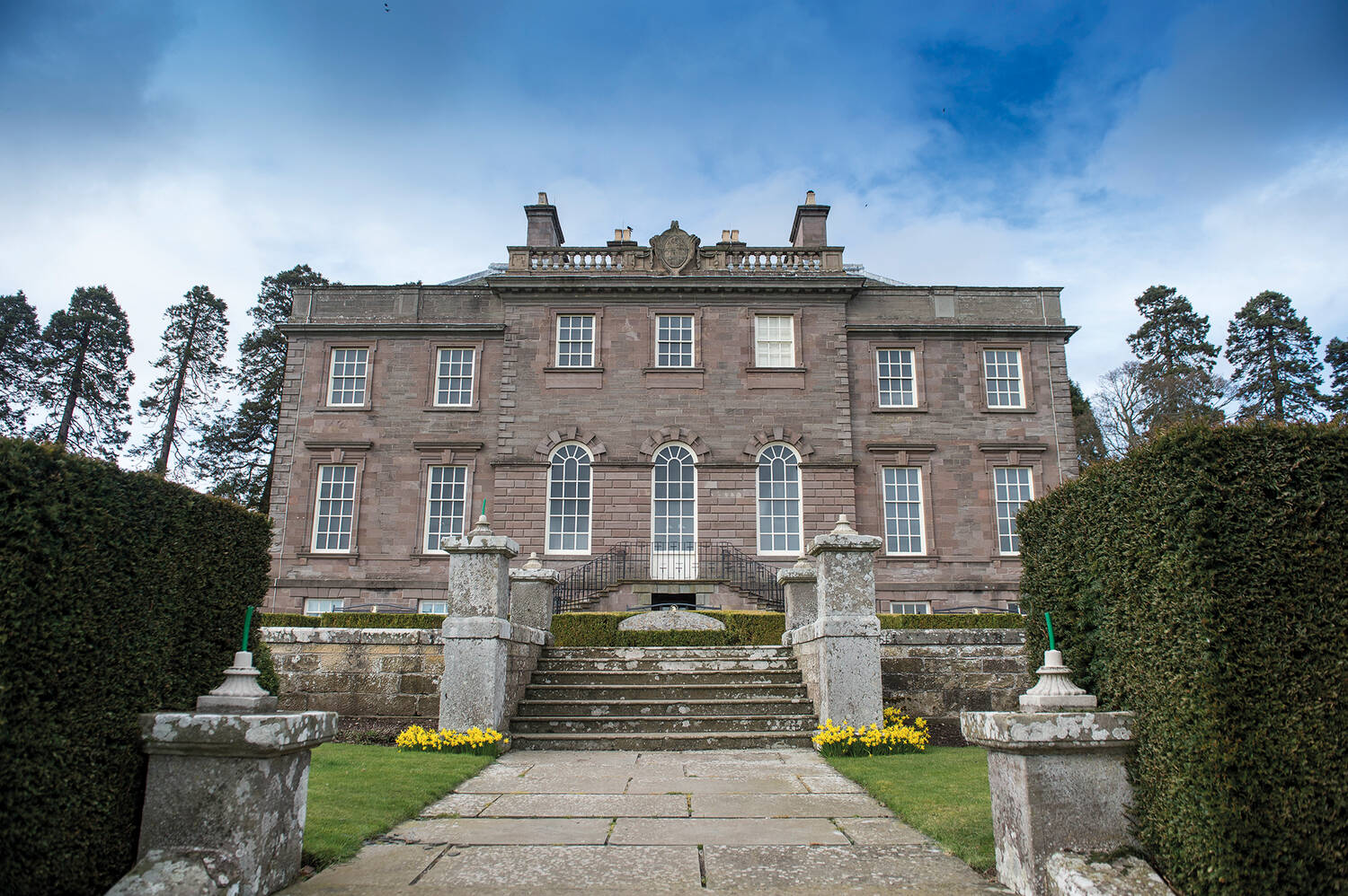 A view standing in front of a large country house, looking up a set of grand stone steps. Neat hedges line the path and clumps of daffodils grow either side of the pillars.