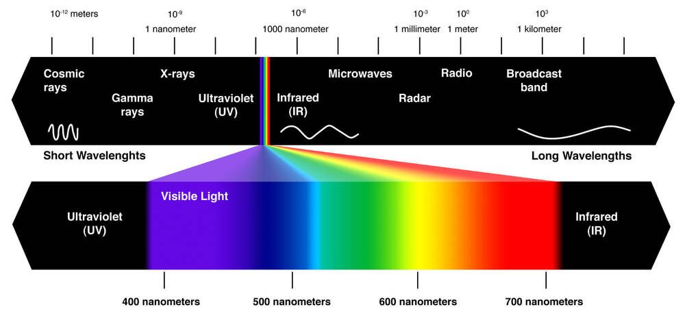The Light Spectrum (wavelength in nanometres [nm])