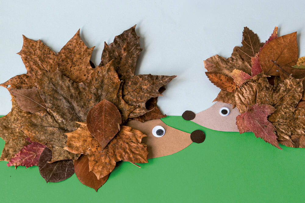 A pair of hedgehogs made out of coloured paper and dry leaves