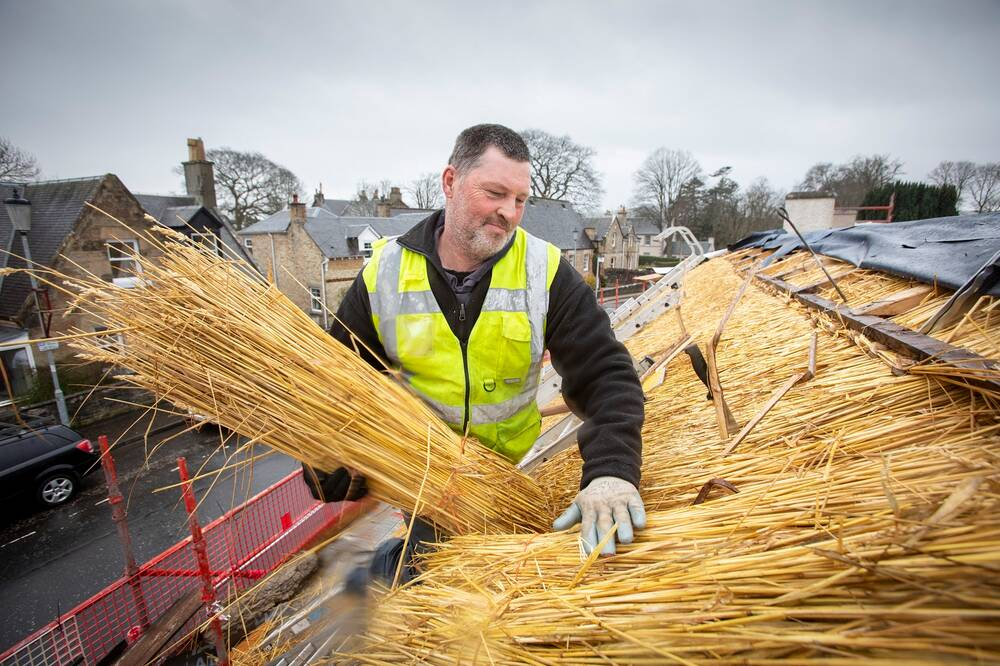 A man in a high-vis vest stands on a ladder by the thatched roof of Burns Cottage. He holds a large sheaf of straw under one arm.