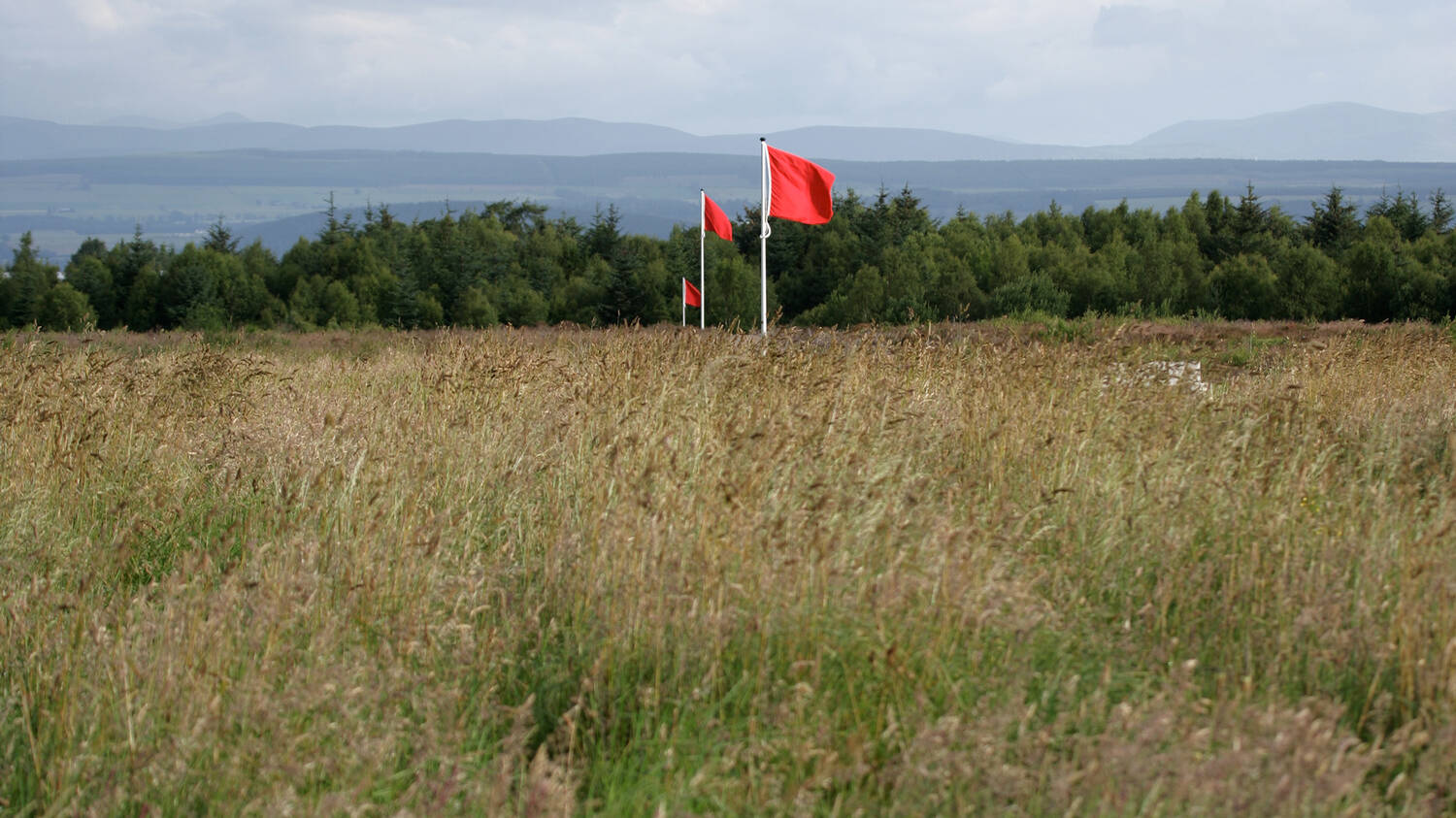 Red flags stand in a line, some distance apart from each other, on Culloden Battlefield.