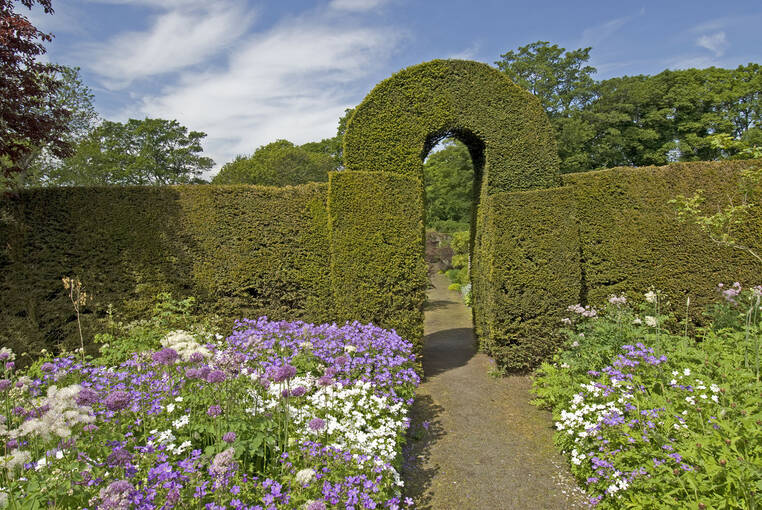 An impressive hedge arch is found at the centre of Malleny Garden.