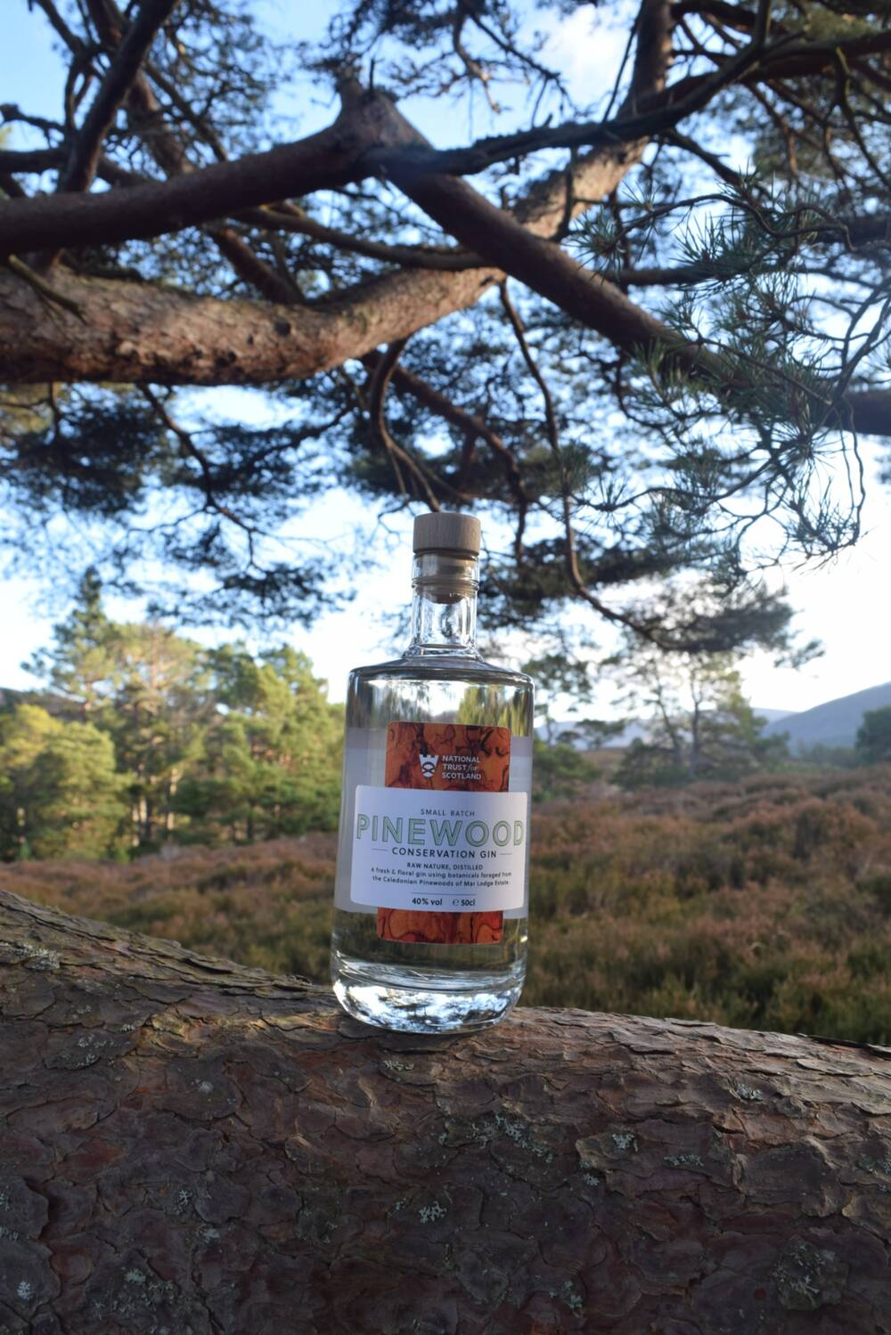A bottle of gin is balanced on a pine log, with a heather-filled clearing in the background.