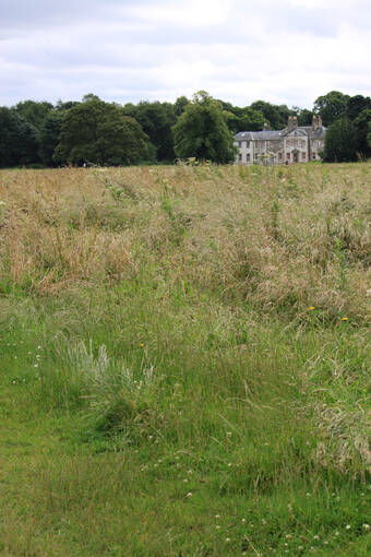 Grass meadow, Newhailes house can be seen in the background.