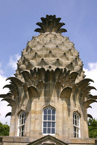Close-up of the pineapple structure
