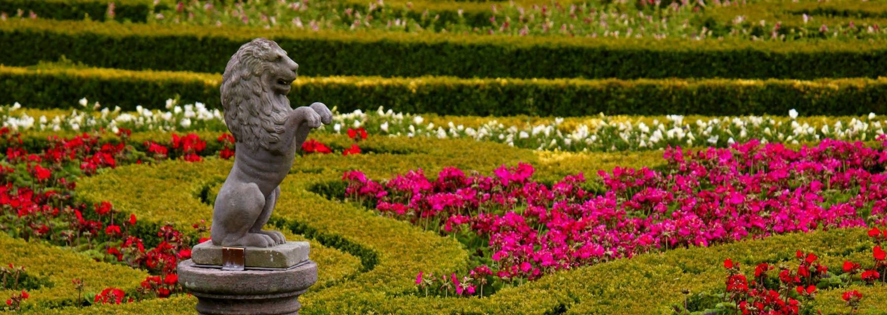 Statue of a lion among flowers at Pitmedden Garden