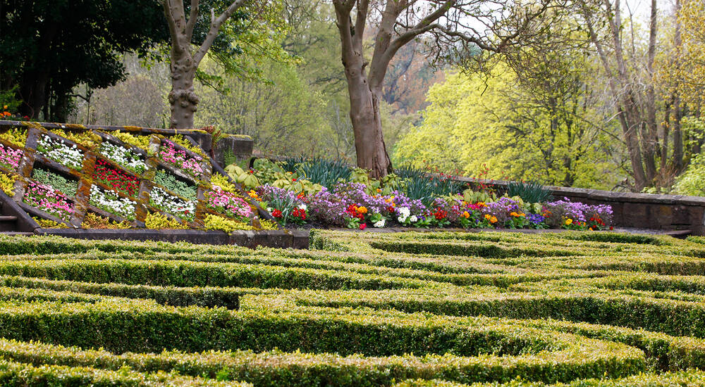 A view of a parterre garden, with a sloping  bed filled with colourful flowers in the background. Beyond that is a woodland of mainly deciduous trees.